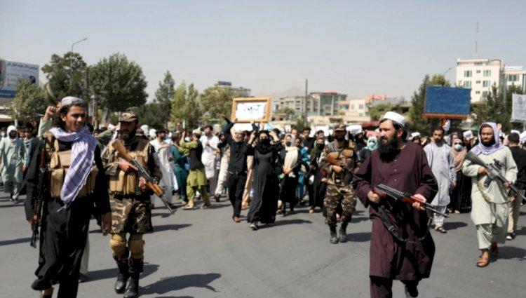 Taleban Geçici Hükümetine Uluslararası Tepkiler