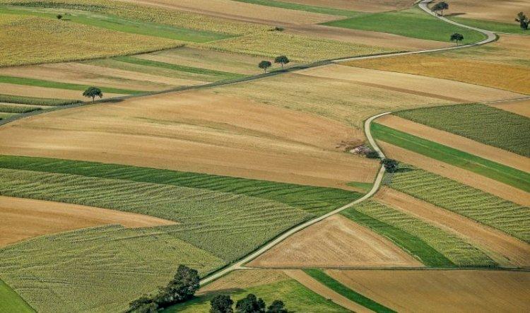 Ukrayna, yabancı yatırımcılar tarafından kontrol edilen dünyanın en büyük ikinci arazi alanıdır