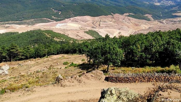 Alman uzman Wohlleben'den Kaz Dağları uyarısı: Türkiye için bir felaket