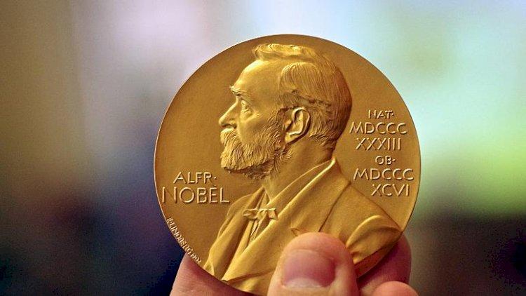 Nobel'de tecavüz istifaları